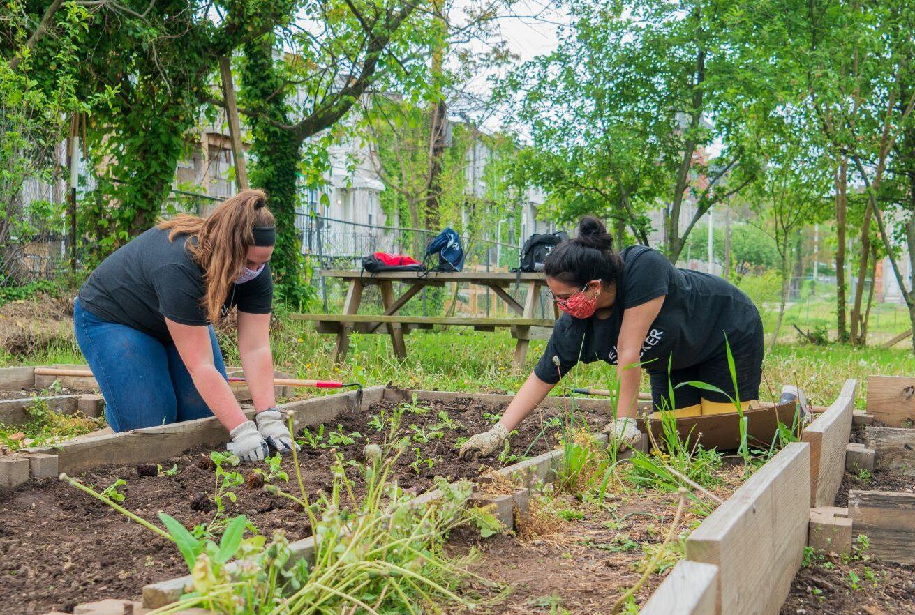 Ellin & Tucker Employee pull weeds and garden
